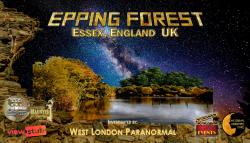 epping-forrest---large-sm-banner